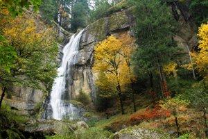 Silver Falls - Tabitha