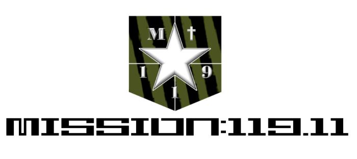 Mission 119-11